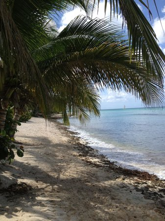 Cadaqués Bayahibe: Private beach at your backdoor