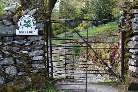 Dora's Field: Entrance Gate near Church