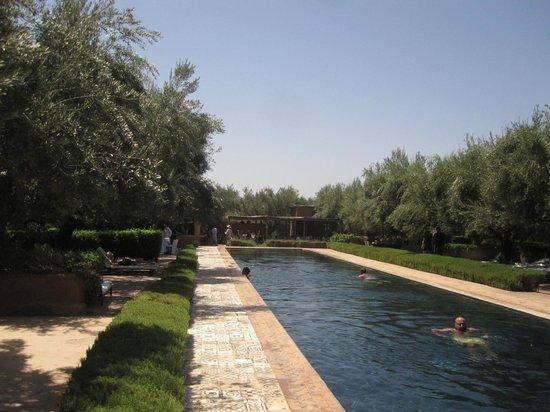 Hotel By Beldi: le bassin de nage