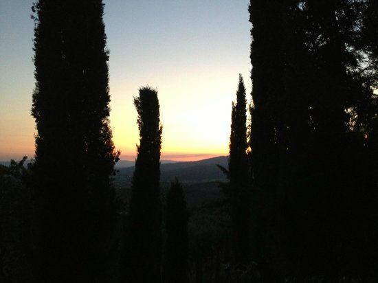 Agriturismo Buccia Nera : View from  garden dining table