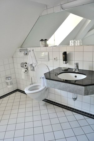 Hotel Goldener Falke: bathroom