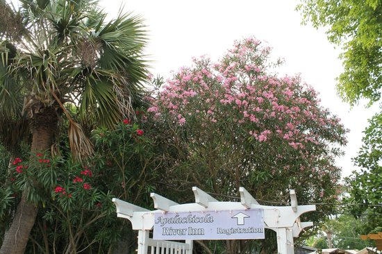 Apalachicola River Inn: Gorgeous, lush, tropical landscaping all around