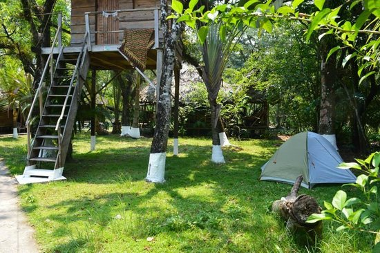 Casa De La Iguana : The court yard. Camping available! 20Q