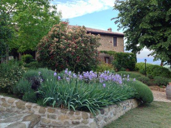 Le Terre di Isa: gepflegte Gartenanlage