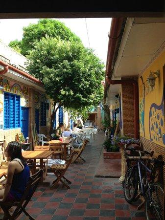 Hostel Mamallena : Courtyard