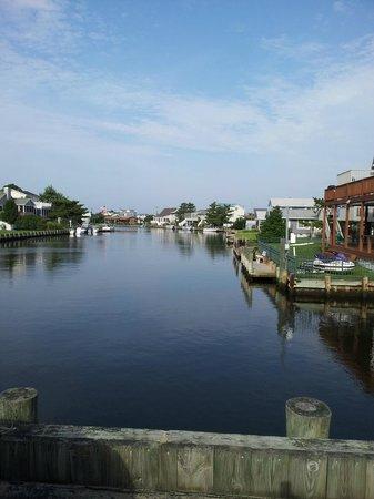Fenwick Islander Motel: Canal view from parking lot