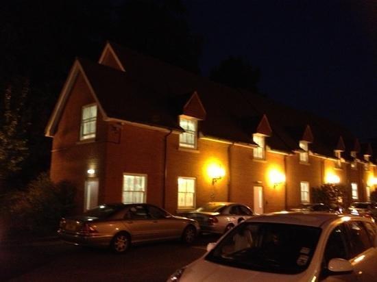 Pinewood Hotel: pinewood in the dark