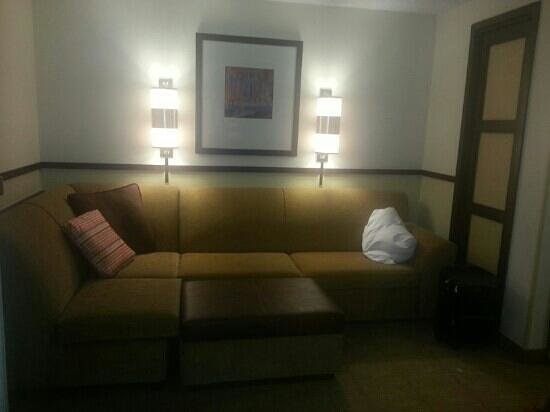 Hyatt Place Dallas/Las Colinas: living area
