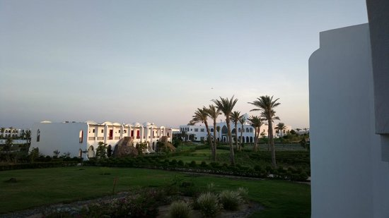 Gorgonia Beach Resort : Resort