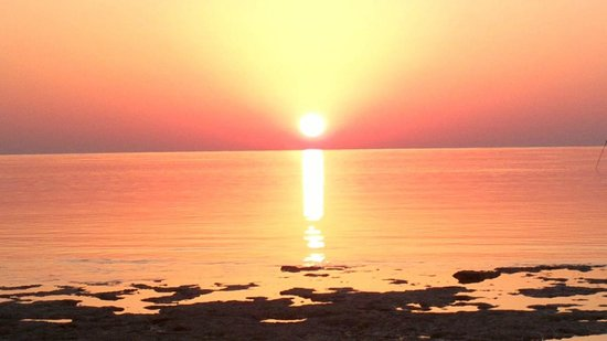Gorgonia Beach Resort : Lever de soleil