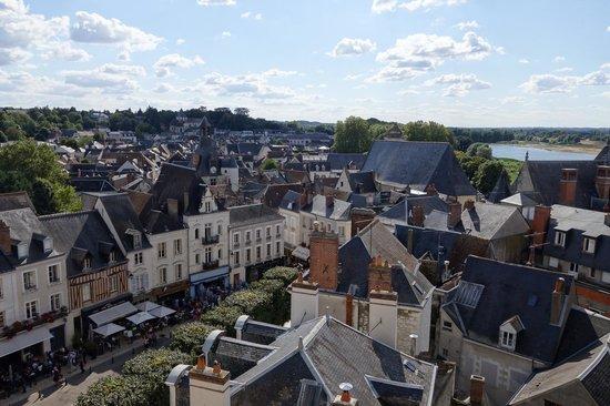 Private Tours Paris: view from Chateau d'Ambroise