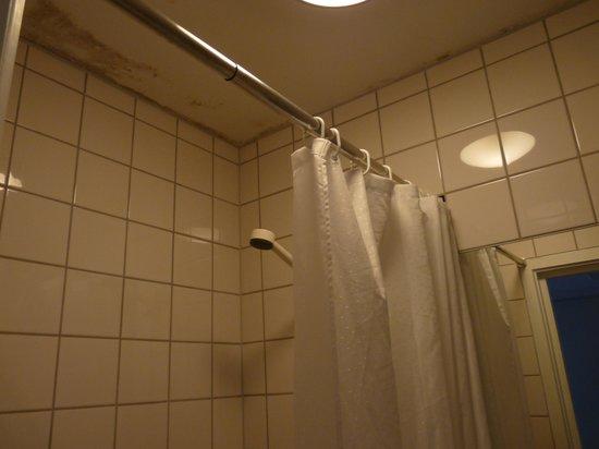 First Hotel Breiseth: Techo del baño