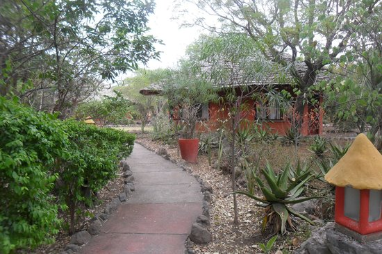 Kia Lodge – Kilimanjaro Airport: lovely setting