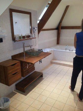 Best Western Hotel Ile De France : salle de bain