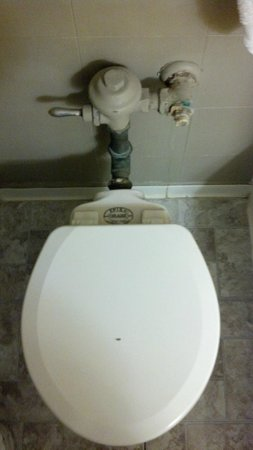 Days Inn Rochester-Downtown: Antique toilet