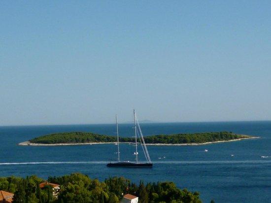 Villa Petricic: perfect view