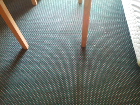 Valley Inn & Conference Center: Moquette