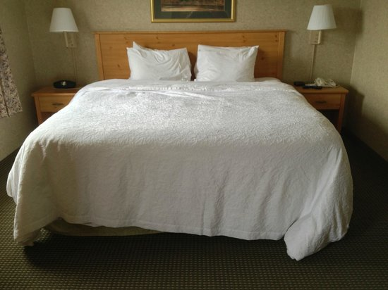 Hampton Inn & Suites Petoskey: How our bed was made up when we returned to the room on our 2nd day