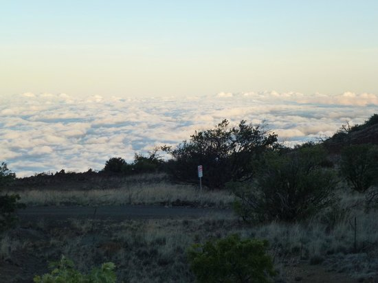 Maunakea Visitor Information Station : Mauna Kea - above the clouds
