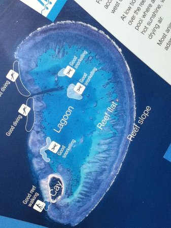 Lady Musgrave Island : Picture of display showing LMI at it's lagoon.