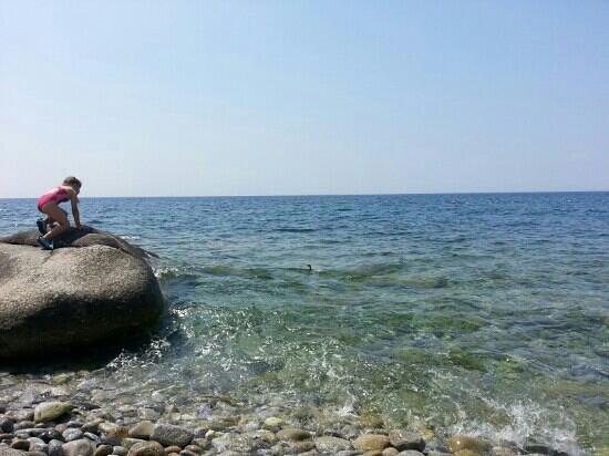 Hotel Aurora : la spiaggetta di Chiessi: acque limpife e cormorani