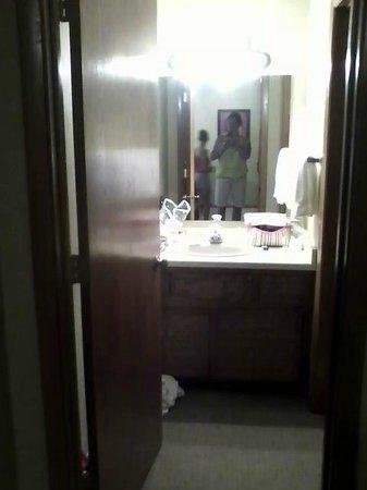 Landmark Resort: vanity