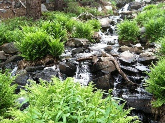 Skelton Lake : Skelton to Arrowhead Creek