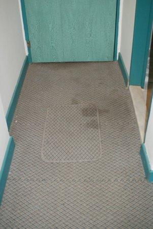 Hotel Albora: Dirty Room