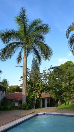 Kal Nawi Hotel: Trees and garden