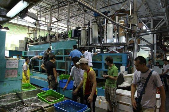 香港仔魚市場