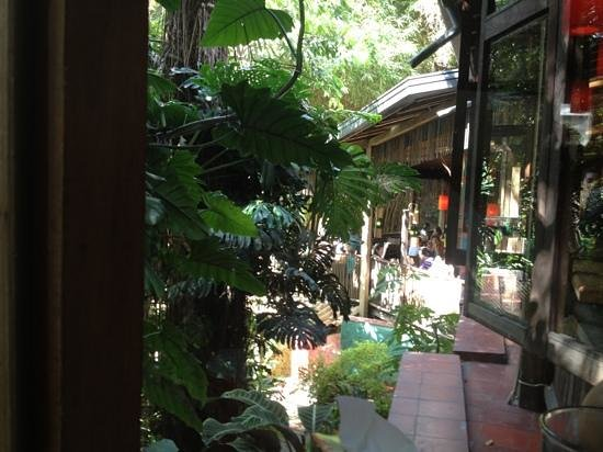 Il Forno Colombia: ambiente tranquilo!