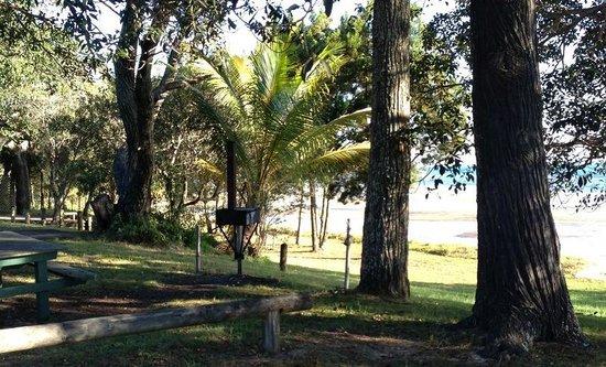 Straddie Camping: Adams Beach Camping Ground