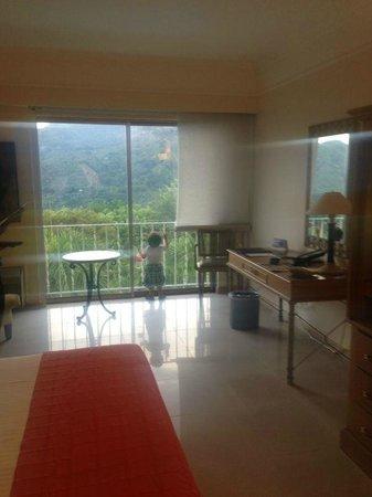 Hotel Estelar Altamira: Hermosa vista!