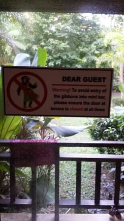 Railay Princess Resort and Spa: 0attention gibbons mais ras