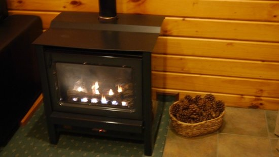 Fox Glacier Lodge: Cozy fire - the unit's heating