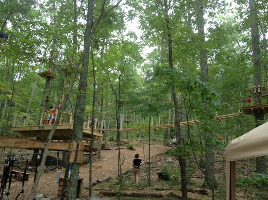 The Adventure Park at Storrs: Dock to begin courses