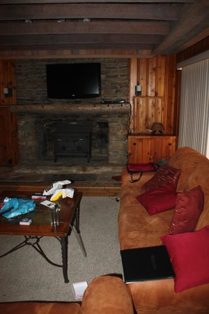 Seven Springs Mountain Resort: living room. very warm, heavy smoke smell and no fans