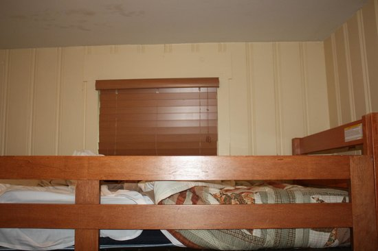 Seven Springs Mountain Resort: top of bunks, kids didn't want top bunk cause of bugs on ceiling and spiders in window.