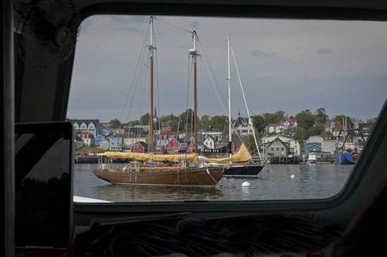Lunenburg Whale Watching Tours : Ships in the harbour as we came back in