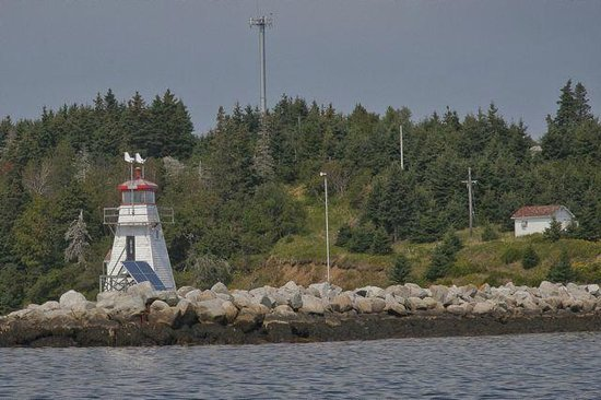 Lunenburg Whale Watching Tours : Lighthouse on the way back in