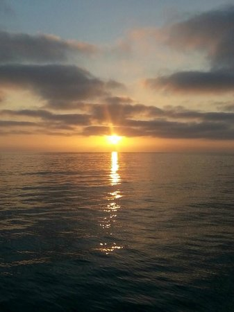 Dana Wharf Whale Watching & Sportfishing: Ocean Sunset