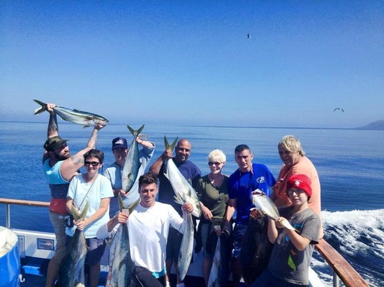 Dana Wharf Whale Watching & Sportfishing: Tuna!!
