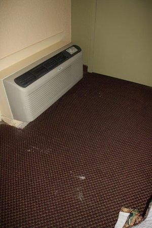 Days Inn Grove City Columbus South : Dirt on floor. Carpet condition