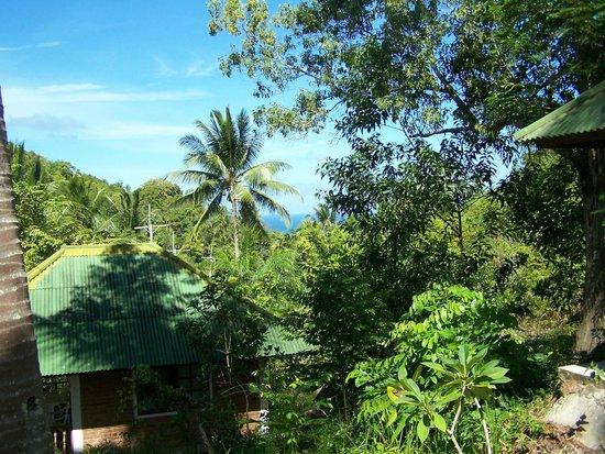 Phangan Natural Resort: seeview