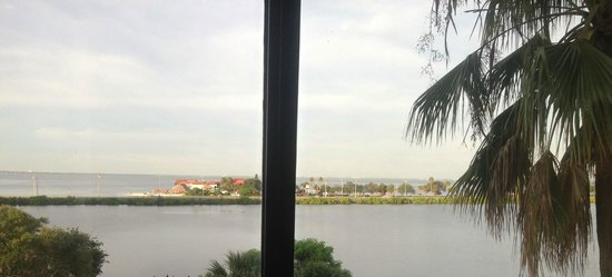 DoubleTree Suites by Hilton Tampa Bay: View from the 4th Floor Suite