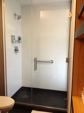 Bathroom Partitions Cleveland Ohio bathroom, stall shower & toilet behind mirrored sliding door