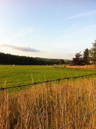 Auchenhowe Cottage: beautiful views