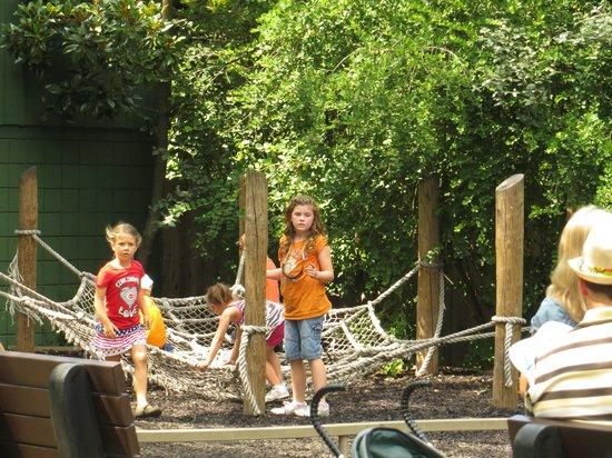 Cincinnati Zoo & Botanical Garden: Neat Big Play area in kids zoo section w/bathrooms