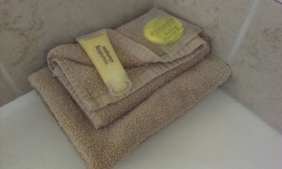 Alpine Lake Motor Lodge: Bathroom supplies
