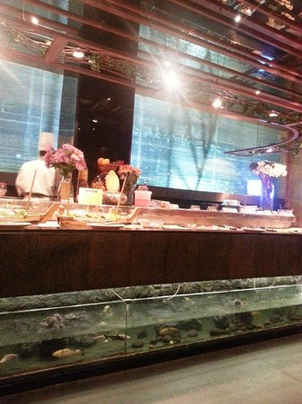 Global Fusion Restaurant : the Sushi counter